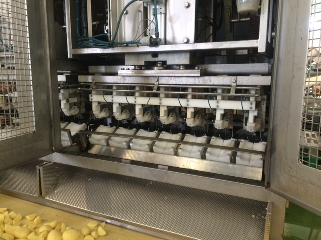 Finis Potato Quartering Machine